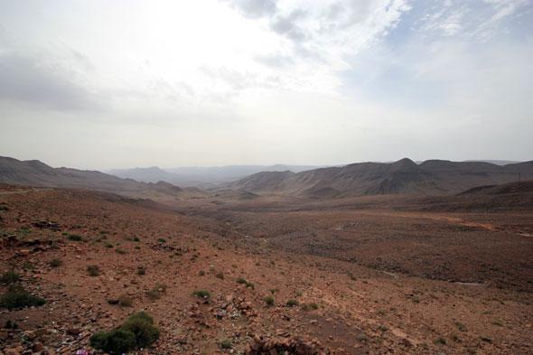 Desert Safari 02