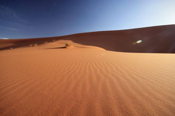 Erg Chebbi Dunes 06