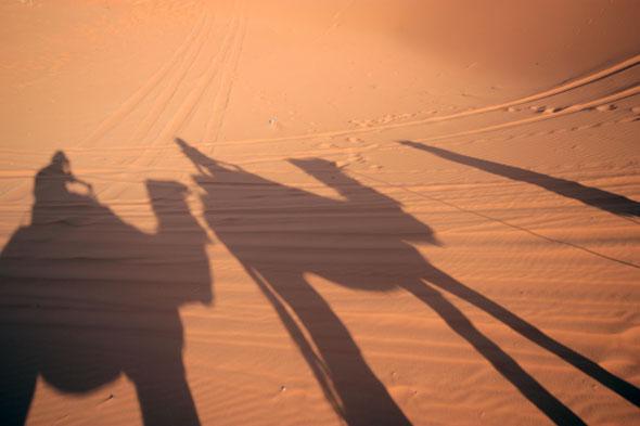 Sahara Camel Ride 02