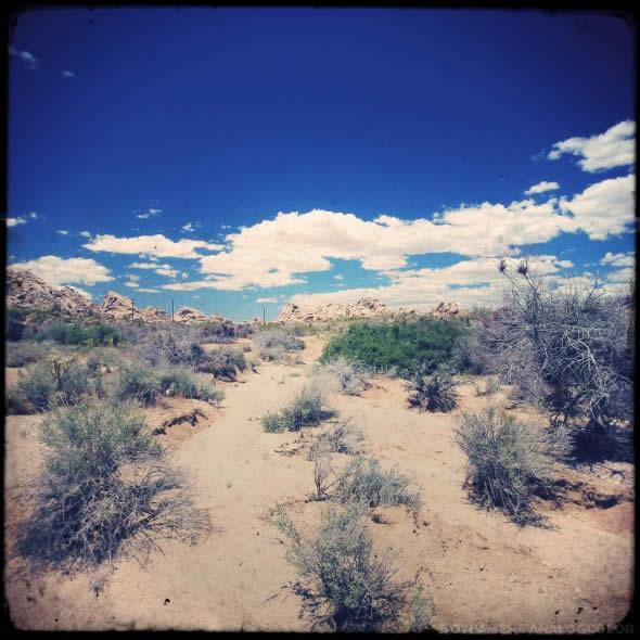 Mojave 1