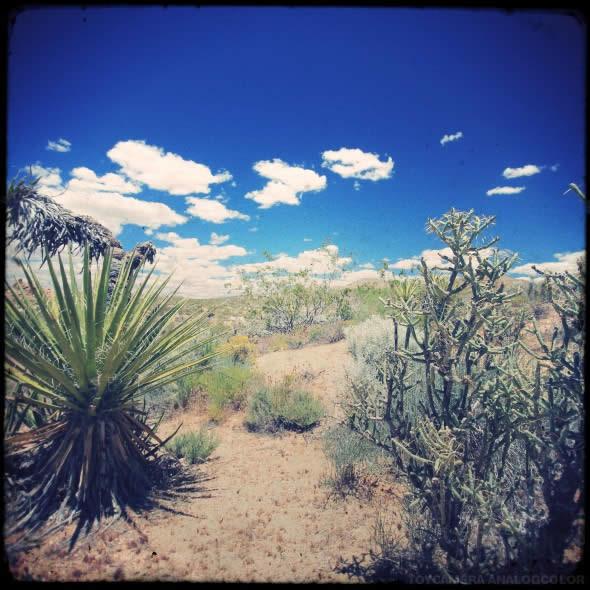 Mojave 3
