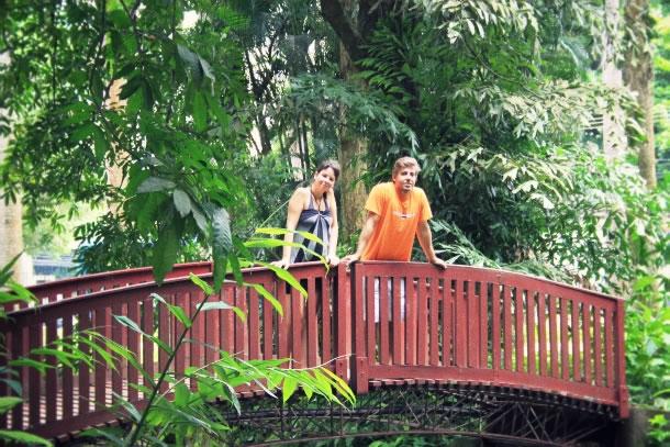 rio-de-janeiro-botanical-gardens-1