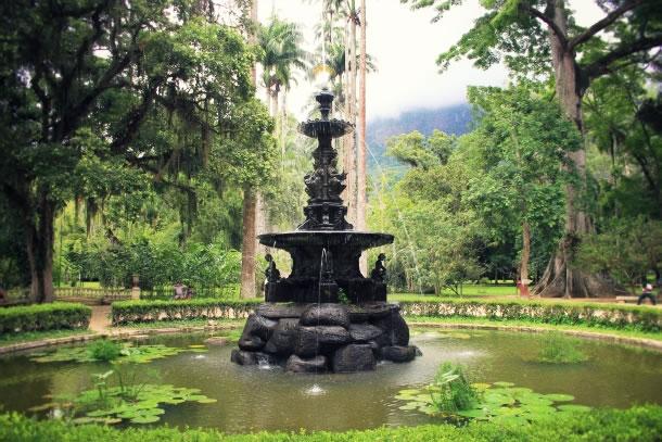 rio-de-janeiro-botanical-gardens-5