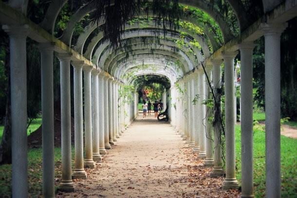 rio-de-janeiro-botanical-gardens-6