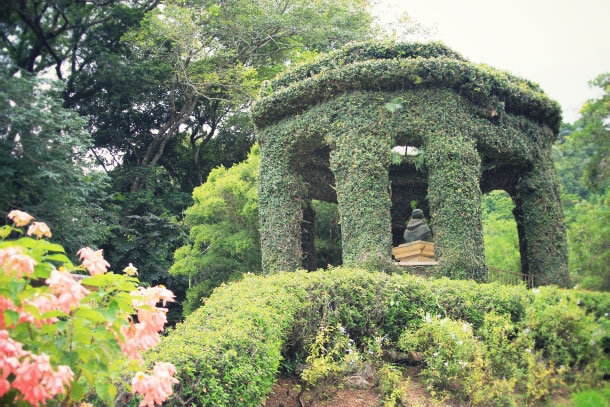 rio-de-janeiro-botanical-gardens-7
