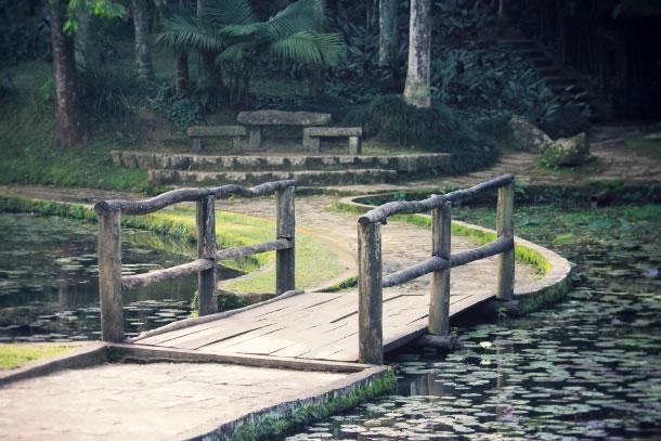 sao-paulo-botanical-gardens-10