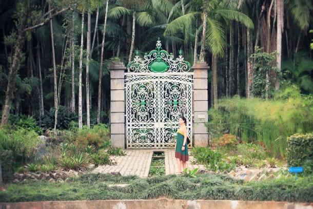 sao-paulo-botanical-gardens-12