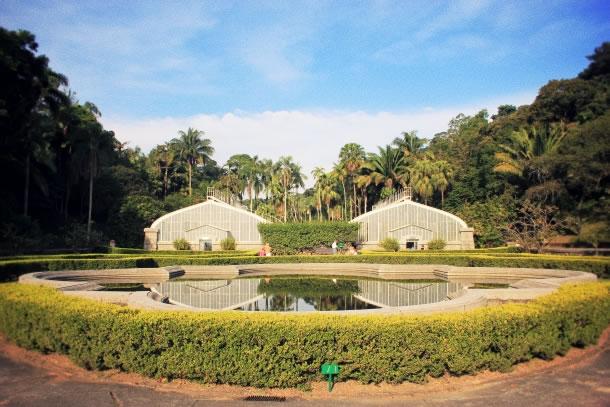 sao-paulo-botanical-gardens-4