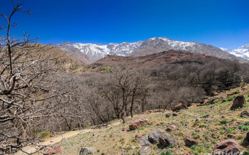 Trekking in Toubkal National Park, Morocco