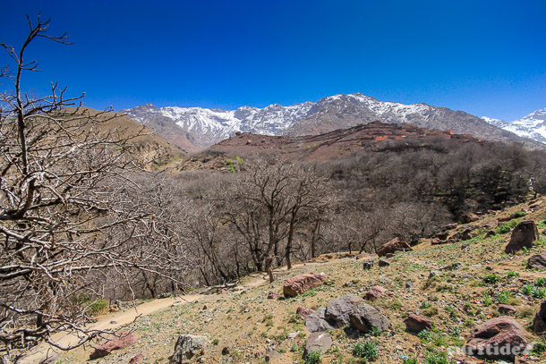 Trekking in Toubkal National Park, Morocco