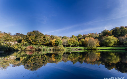 The Fish Pond, Priory Park, Bath, UK