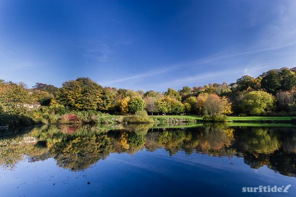 The Fish Pond, Priory Park, Bath, UK