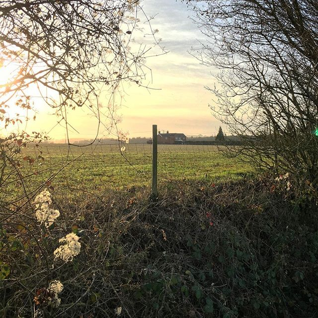 Winter walk earlier on today #christmas #xmas #landscape #nature #winter