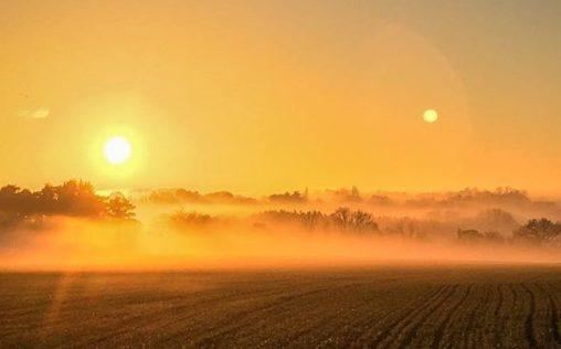 Stortford in the mist