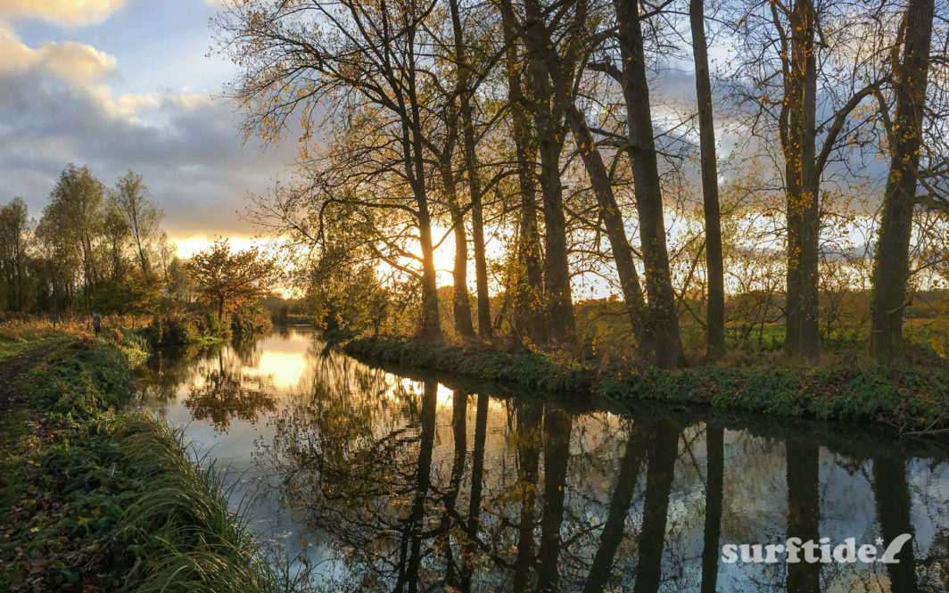 Sunlight and trees reflecting on the still water at sunset on the River Stort in Hertfordshire